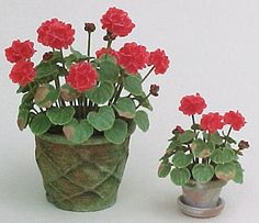 Geraniums with realistic wilting brown leaves
