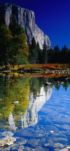El Capitan ~ Autumn reflections of the 3000 foot (900m) sheer face of El Capitan in Yosemite National Park ~ central eastern California  • photo: Emily Riddell