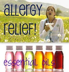 7 essential oils for allergy . Eucalyptus, rosemary, clove, lavender, lemon, peppermint, roman chamomile.