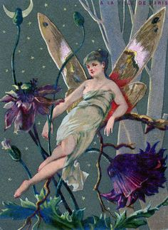 This is a charming old Graphic showing a Fairy Lady at night.