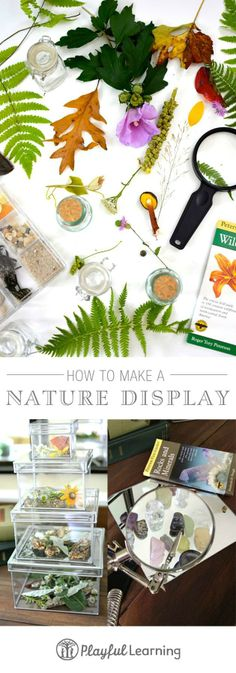 How to make a nature