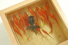 Japanese artist Riusuke Fukahori paints incredibly realistic three-dimensional goldfish using acrylic paint layered over clear resin. Check out the video! It's really amazing!