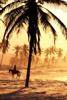 Riding horseback on the beach