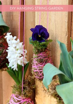 How To: Make a DIY Hanging String Garden for Spring