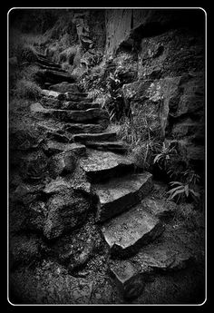 Steps to Lud's Church