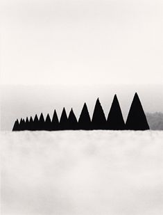 Conical Hedges, Versailles, France, 1988 by Michael Kenna