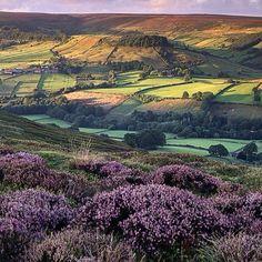 New Yorkshire, England.