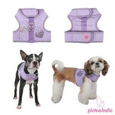 DIY dog harness with different sizes available