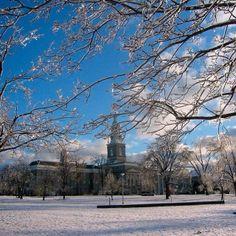 Winter wonderland! Hayes Hall, South campus. #ubuffalo #universityatbuffalo