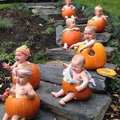When the pumpkin picture opp you envisioned turns into a cry fest with seven babies.  - haha been there, done that!  Source: Instagram user jillmawer