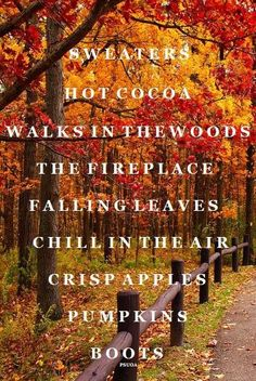 Some of the many (many!) reasons to adore autumn. #fall #autumn #lists