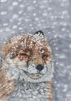 Let it snow by *Sarahharas07 on deviantART