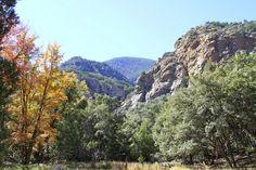 Ramsey Canyon Preserve, Sierra Vista, Arizona