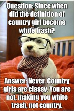 I find this to be a funny quote about the difference of being country and being white trash. Smart Dog, Dogs, Funny Country Quotes, Redneck, Funny Quotes, White Trash Quotes, Hipster Pup