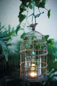 Garden lights..