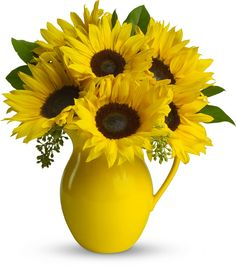 Telefloras Sunny Day Pitcher of Sunflowers