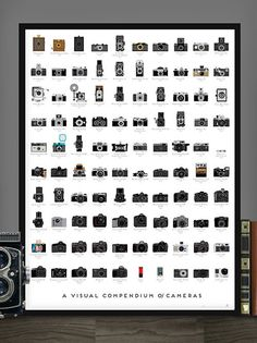 """Poster called """"A Visual Compendium of Cameras"""" that offers a brief visual history of photography."""