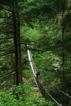 Logan Creek suspension bridge - BC