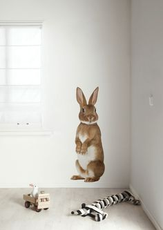 there's a bunny on my wall...