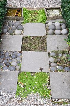 For front patio - arrange flagstones, but leave some gaps for ground covers such as thyme.