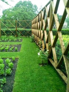 This is a great looking fence idea and so practical too.... Minimal wood used, structurally strong with 2x4s and a stock fencing and lots of light allowed to come in but keep the deer out!