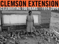 Extension Annual Report, Photo courtesy of Clemson University Library Archives. #ClemsonExt100