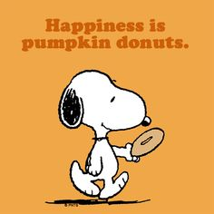 Happiness is pumpkin donuts.