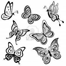 Papallones blanc i negre