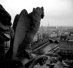 Gargoyles on the roof of Notre Dame, Paris by oropeza on flickr.