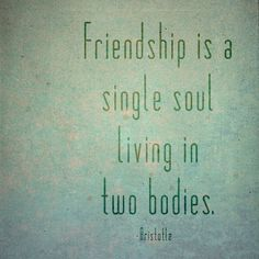 #quote #friendship #theBeautyofOne