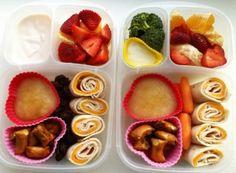 F.A.B. – Frozen Applesauce Bento! #easylunchboxes #bento