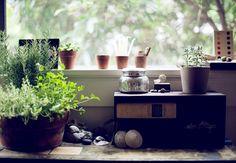 julie pointer's home via design sponge