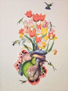 nectar surreal heart & hummingbird collage anatomical anatomy art by bedelgeuse