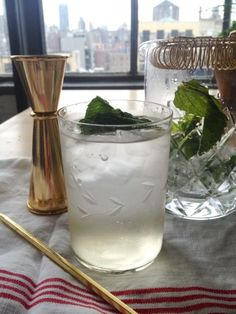 Cucumber Cape Codder
