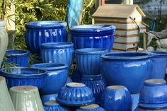 Cobalt Blue Plant Containers. Excellent accent for your outdoors