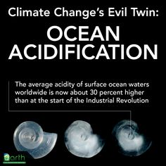 CO2 + Water = Carbonic Acid meaning weaker shells in marine life