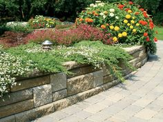 retaining wall backyard?
