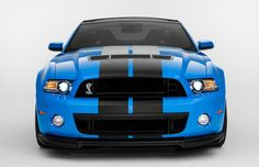 Shelby Mustang 2013 - growl!