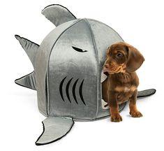 Shark Pet Bed