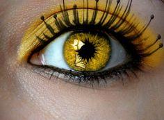 butterfli, pittsburgh steeler, yellow eye, cat eyes, makeup, steeler footbal, sport, beauti, steeler nation