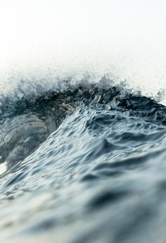 Ocean x