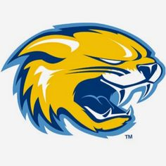 Subscribe and check out Wildcats Athletic's YouTube channel! There you will find videos highlighting our Collegiate sports teams.