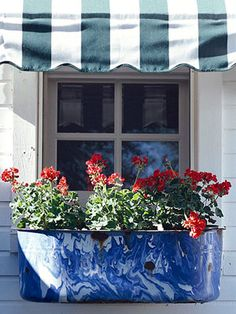 windowbox, fourth of july, red white blue, decorating ideas, window flower boxes, garden design ideas, blues, bathroom windows, window boxes