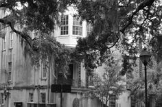 Savannah Ghost Tours with Blue Orb Tours