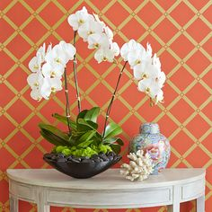 This head-turning orchid holds its own next to eye-catching prints and graphic objects. A modern black bowl and river stones contrast with the clean white blooms and tall stems for a sleek black-and-white presentation.