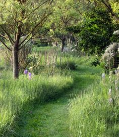 How to mow a path in your yard -- it'll look straight out of a storybook. *WHAT A SIMPLE & GREAT IDEA