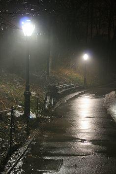 rainy night in Central Park