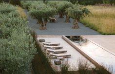 Renée Finberg ' TELLS ALL ' in her blog of her Adventures in Design: Andrea Cochran - Landscape Architecture