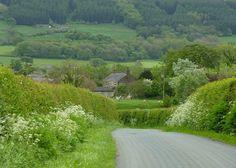 The quiet Lane by Lancashire Lass Photo's, via Flickr