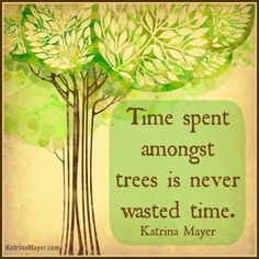 Time spent amongst trees is never wasted time. Katrina Mayer